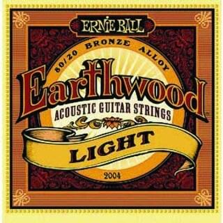 Ernie Ball Earthwood Acoustic Guitar Strings