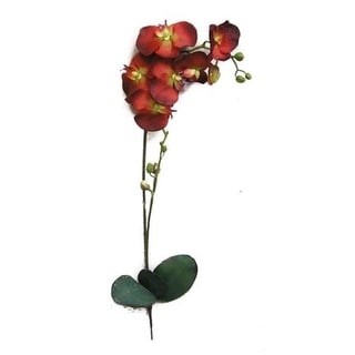 Admired by Nature GPL951-RED Artificial Orchid Phalaenopsis Spray Red - 3 x 31 in.