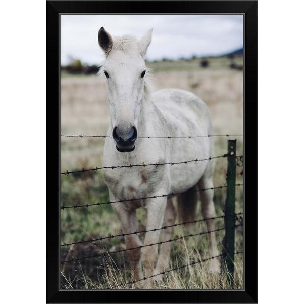 """""""White horse"""" Black Framed Print"""