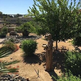 """37"""" Fallow Brown St. Francis of Assisi with Bird Outdoor Patio Garden Bird Bath"""