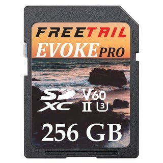 Edge Memory - Ftsd256a10