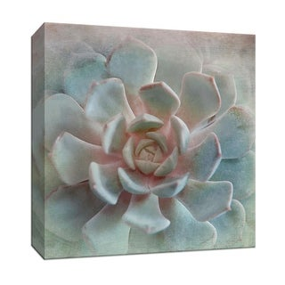 "PTM Images 9-147932  PTM Canvas Collection 12"" x 12"" - ""Pastel Succulent II"" Giclee Flowers Art Print on Canvas"