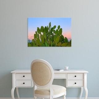 Easy Art Prints Keren Su's 'Cacti And Sisal In Dry Forest' Premium Canvas Art