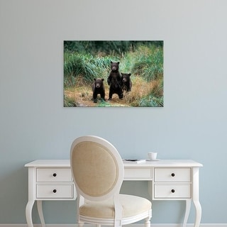Easy Art Prints Steve Kazlowski's 'Three Spring Cubs' Premium Canvas Art