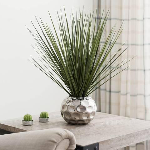 Ornamental Tall Grass