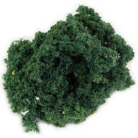 Medium Green - Foliage Bushes 150 Square Inches