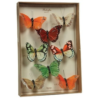Link to Feather 8 Piece Butterfly Accent Decor with Specimen Box, Multicolor Similar Items in Accent Pieces