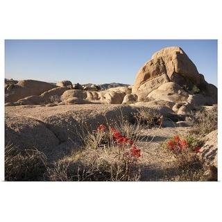 """Joshua Tree boulder formations."" Poster Print"