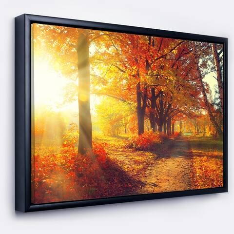 Designart 'Autumnal Trees in Sunrays' Large Landscape Framed Canvas Art Print
