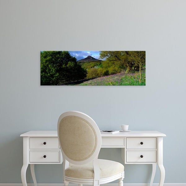 Easy Art Prints Panoramic Image 'Bluebell Flowers, Cleveland, North Yorkshire, England, United Kingdom' Canvas Art