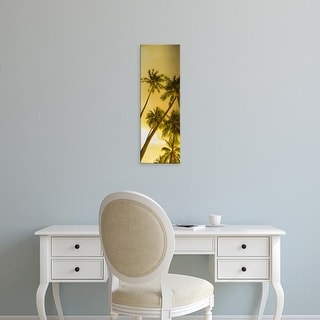 Easy Art Prints Panoramic Images's 'Low angle view of palm trees, French Polynesia' Premium Canvas Art