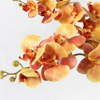 "FloralGoods Real Touch Butterfly Orchid Stem in Orange Yellow 37"" Tall"