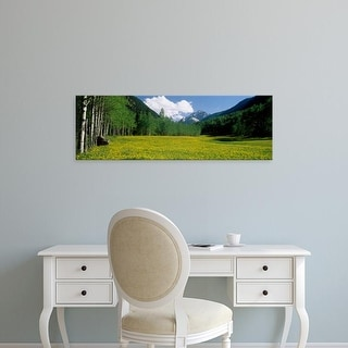Easy Art Prints Panoramic Image 'Trees along field with mountain in the background, Maroon Bells, Colorado' Canvas Art