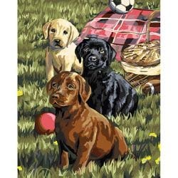 """Puppy Picnic - Paint By Number Kit 16""""X20"""""""