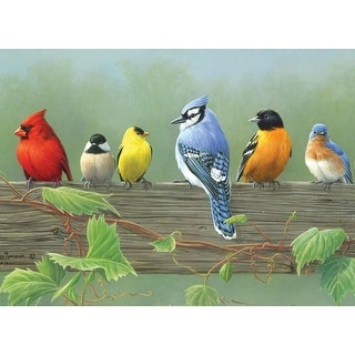 """Paint By Number Kit Artist's Collection 12""""X16""""-Rail Birds"""