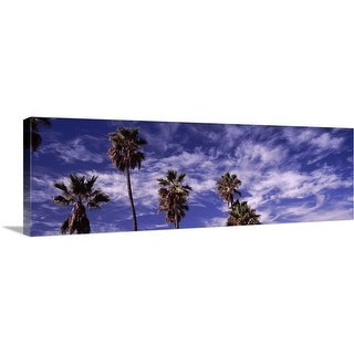 """""""Low angle view of palm trees, Southern California, California"""" Canvas Wall Art"""
