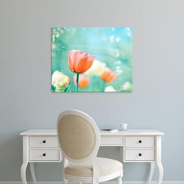 Easy Art Prints Carolyn Cochrane's 'Garden of Dreams' Premium Canvas Art