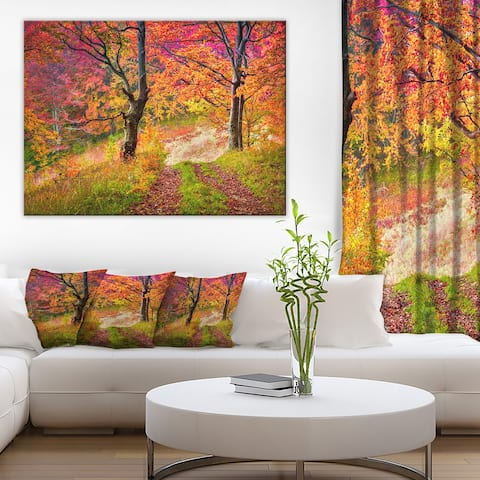 Designart 'Bright Colorful Fall Trees in Forest' Large Landscape Art Canvas Print