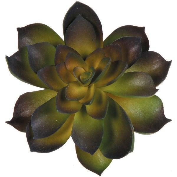a1c9009b25 Shop Echeveria Rosette Faux Succulent 4.5