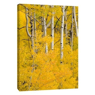 """PTM Images 9-105362  PTM Canvas Collection 10"""" x 8"""" - """"Aspen 6"""" Giclee Forests Art Print on Canvas"""
