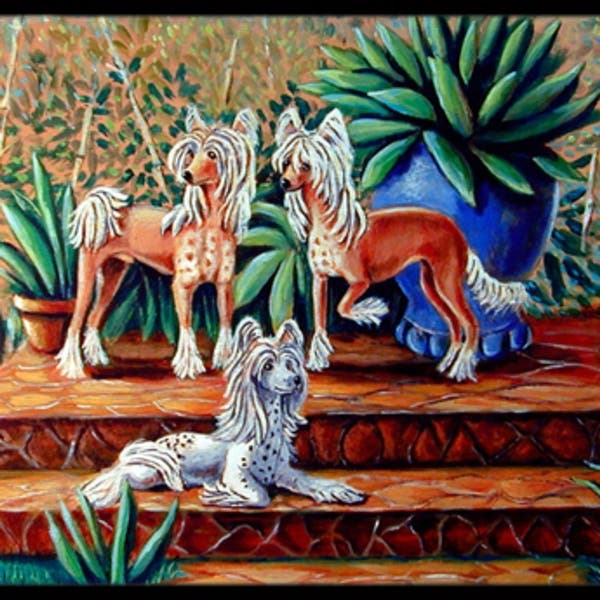 Carolines Treasures 7505mat 18 X 27 In Chinese Crested Indoor Outdoor Mat On Sale Overstock 27706890