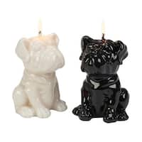 Assorted Ivory & Black Bulldog Pup Candle - Pack of 4