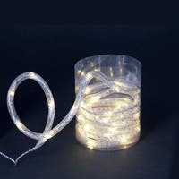 9.8' LED Warm White Christmas Rope Light with Silver Mesh Lining