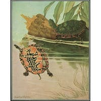 Nature Magazine 2 Turtles in a Pond Vintage Cover (Art Print - Multiple Sizes)