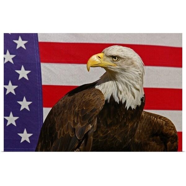 """Bald eagle and American Flag"" Poster Print"
