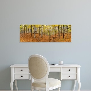 Easy Art Prints Panoramic Image 'Trees, Forest, Stephen A. Forbes  Recreation Area, Marion County, Illinois' Canvas Art