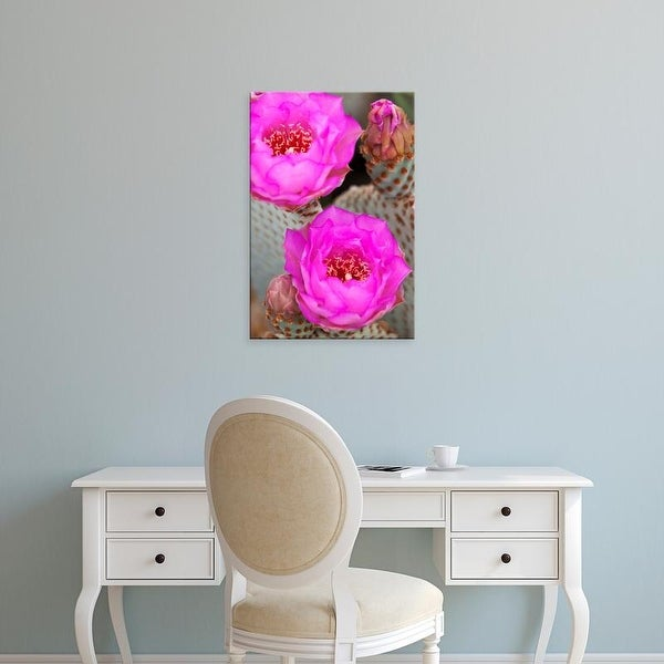 Easy Art Prints Jamie & Judy Wild's 'Flowering Beavertail Cactus' Premium Canvas Art