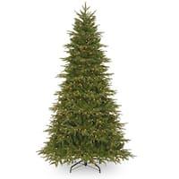 6.5' Pre-Lit Northern Frasier Fir Artificial Christmas Tree - Clear Lights - green