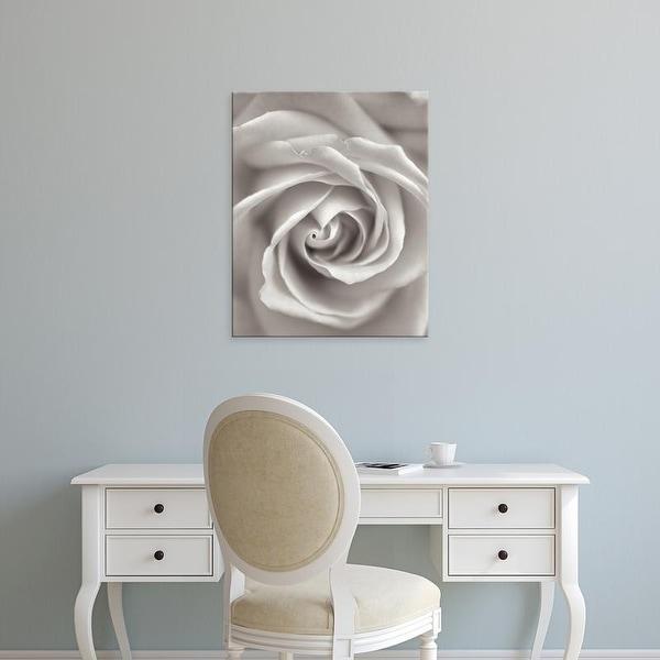 Easy Art Prints Alan Blaustein's 'Florison #23' Premium Canvas Art