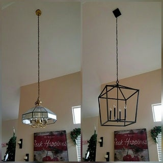 "Millennium Lighting 3254 4 Light 20"" Wide Foyer Pendant with Cage Open Frame and Candle Style Lights"