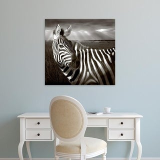 Easy Art Prints Jaynes Gallery's 'Zebra' Premium Canvas Art