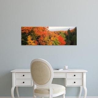 Easy Art Prints Panoramic Image 'Autumnal trees, Hiawatha National Forest, Upper Peninsula, Michigan' Canvas Art