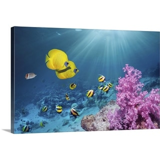 """""""Coral reef with Butterflyfish"""" Canvas Wall Art"""
