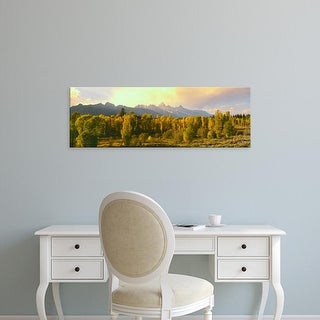Easy Art Prints Panoramic Images's 'Cottonwood trees, Teton Range, Grand Teton National Park, Wyoming' Canvas Art