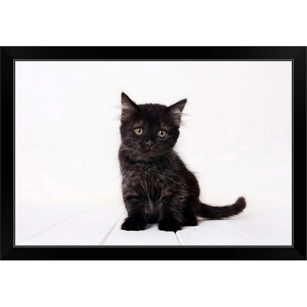 """""""Black kitten."""" Black Framed Print"""