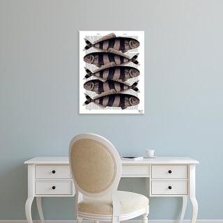 Easy Art Prints Fab Funky's 'Five Striped Fish' Premium Canvas Art