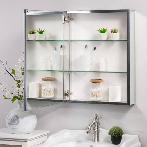 Porch & Den Molly Medicine Cabinet with 2 Adjustable Shelves