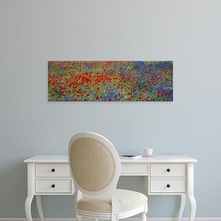 Easy Art Prints Panoramic Images's 'Wildflowers Andalucia Spain' Premium Canvas Art