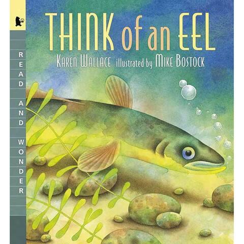 (3 Ea) Think Of An Eel