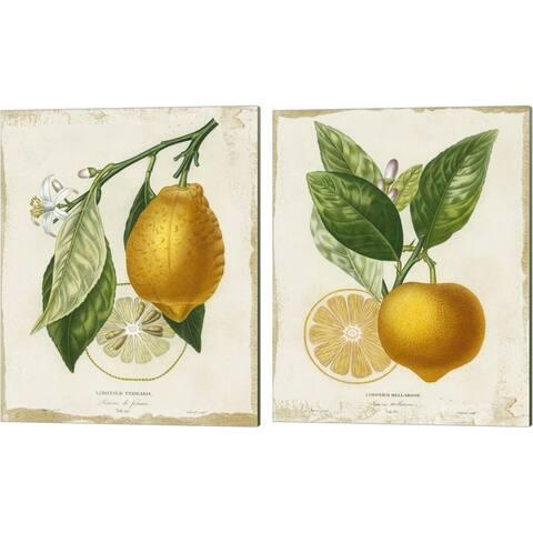 Studio W 'French Lemon' Canvas Art (Set of 2)