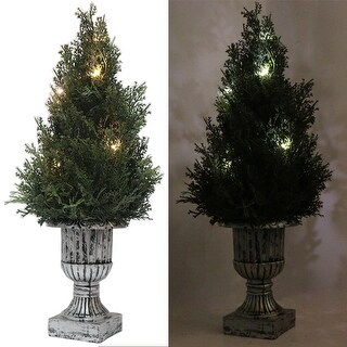 "Kanstar 18"" Decorative Green Artificial Topiary National Tree Plant in Plastic Pot w/10LED Lights"