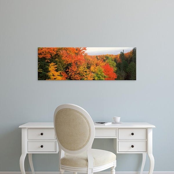 Easy Art Prints Panoramic Image 'Autumnal trees, Hiawatha National Forest, Upper Peninsula, Michigan' Canvas Art