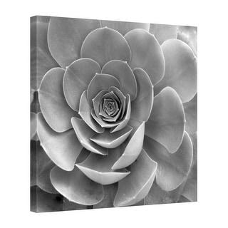 Easy Art Prints Alan Blaustein's 'Floral #22' Premium Canvas Art