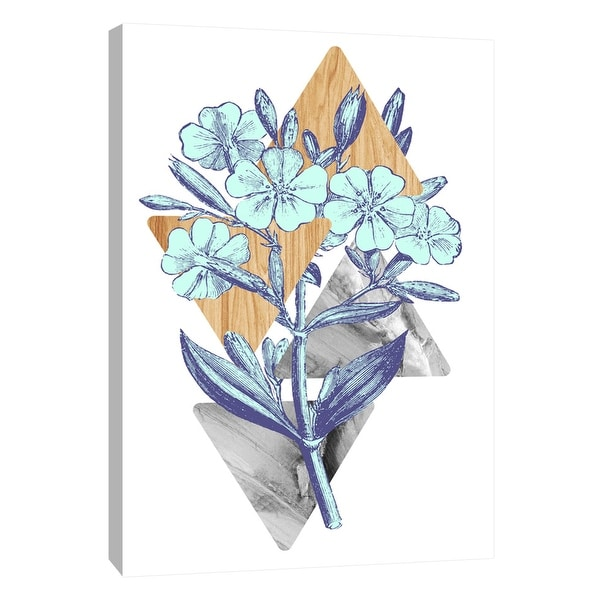 """PTM Images 9-105854 PTM Canvas Collection 10"""" x 8"""" - """"Botanical Studies 3"""" Giclee Flowers Art Print on Canvas"""