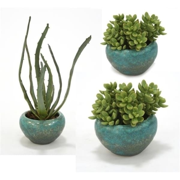 Distinctive Designs International 2981 Set Of 3 Faux Succulents In Antique Turquoise Bowls - 1 Large 2 Small