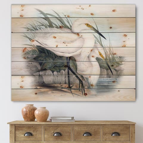 Designart 'Vintage Bird Life I' Traditional Print on Natural Pine Wood